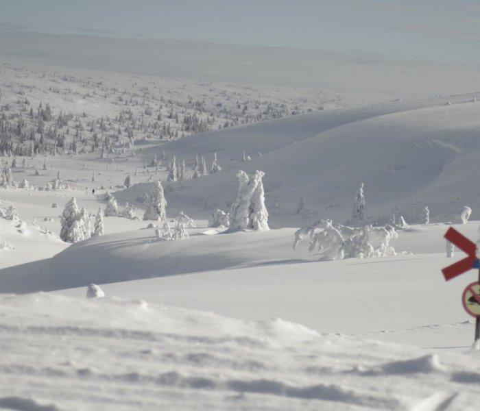 Stöten Fjäll Snö Vy Skoterled